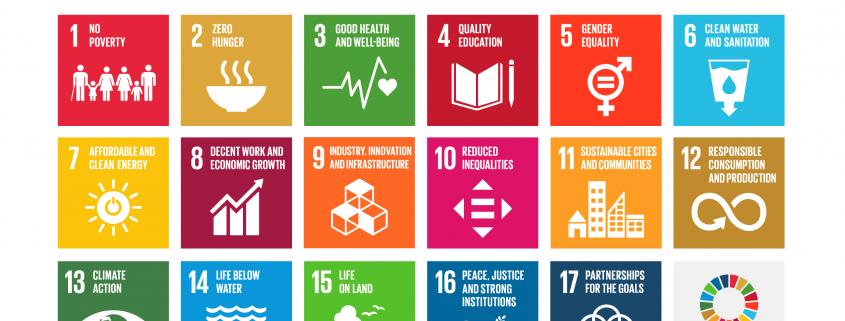 overzicht van Sustainable Development Goals - SDGs | Mijn Keus
