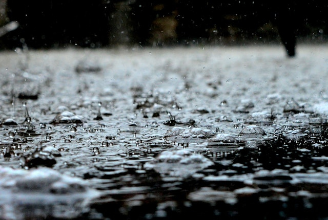 Regen - plensbui | Mijn Keus